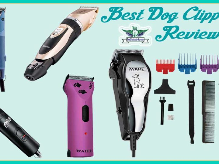20 Best Dog Clippers Review | FAQ's | Buying Guide of 2020