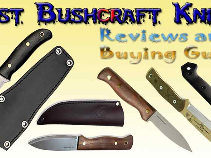 10 Best Bushcraft Knives of 2020 – Bushcraft Knife Reviews and Buying Guide